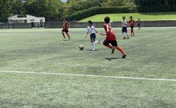 U14 トレーニングマッチ vs NEO、リブレ、TINO~夏の経験値が選手のレベルを上げる~