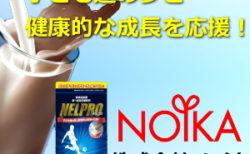 株式会社ノイカ